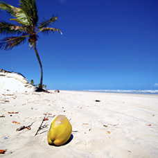 Traumhafter Strand in Bahia, Nord-Brasilien